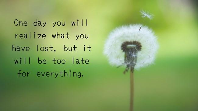 One Day You Will Realize What You Lost Quotes